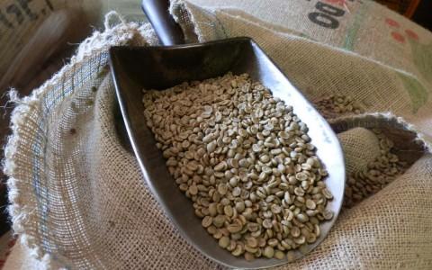 Café Importación alta calidad